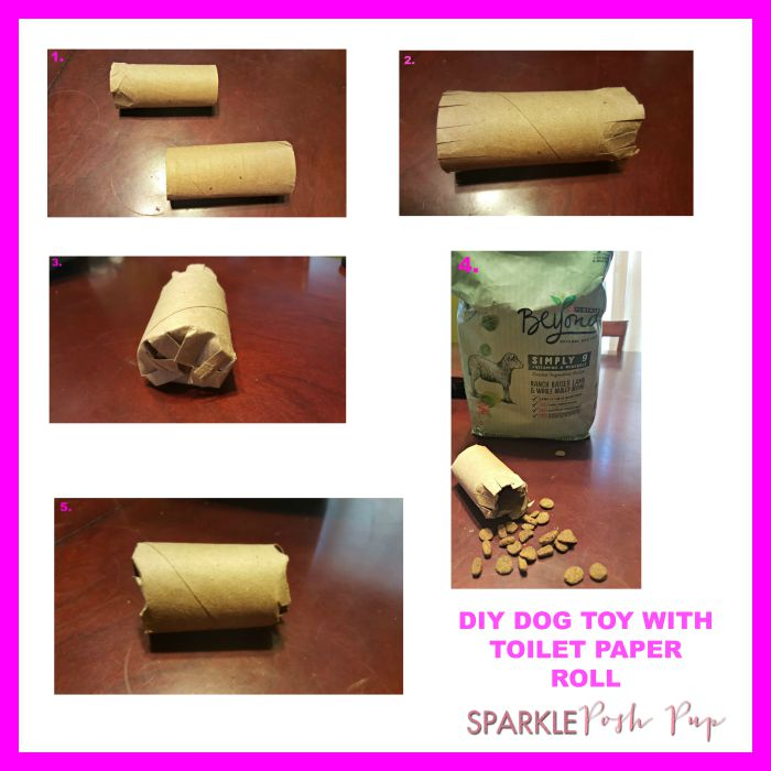 Spoiling Your Pup with DIY Toilet Paper Roll Dog Toys! #PetsLoveBeyond