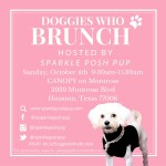 You're Invited to Doggies Who Brunch!!