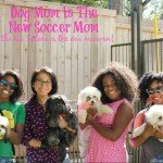 Why Dog Moms Need the 2016 Kia Sedona #DogMomIsTheNewSoccerMom #DriveKia