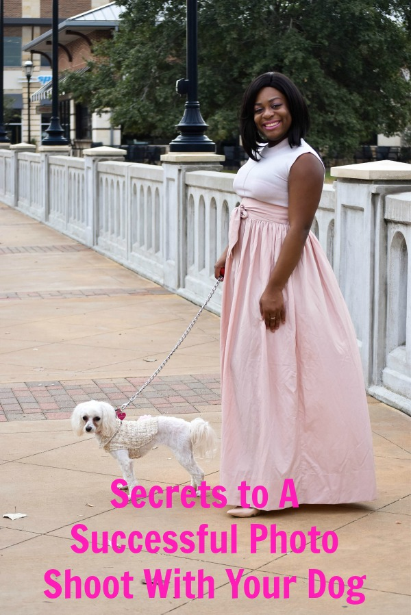 Secrets to a Successful Holiday Photo Shoot with Your Dog! #ToPetsWithLove